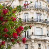 patrimoine Montpellier